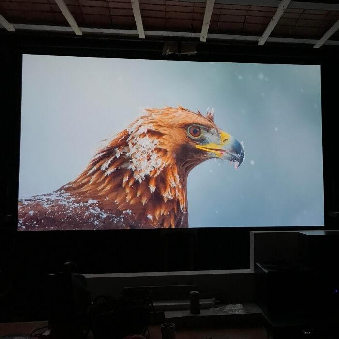 Image projected on high gain projector screen paint using Smart Projector Paint Pro